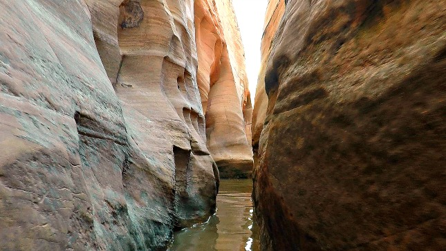 Water in Zebra Canyon